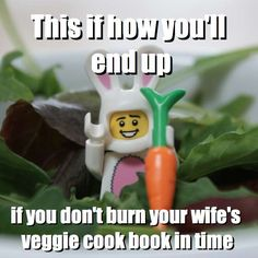 This if how you'll end up - if you don't burn your wife's veggie cook book in time via brickmeme.com