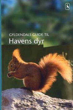 Gyldendals guide til havens dyr | Arnold Busck