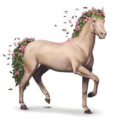 Spring, Seasons horse Spring #46093519 - Howrse
