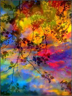 "Saatchi Online Artist Yola Mroszczyk; Photography, ""So Far Away,limited edition 9/15"" #art"