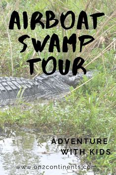 Amazing tour of the Louisiana swamp in airboat - pure thrill. Learn more in this article. #louisiana #swamptour #airboattour #nola #alligatortour #neworleans #usa #familytravel #daytrip #on2continents #travelblog #boattrip Bald Cypress Tree, Cypress Trees, Travel Couple, Family Travel, Airboat Rides, Louisiana Swamp, Boat Tours, Best Blogs, Day Trip