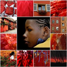 Beauty in Orange and red ...All images are from my Flickr friends . by Catharinas-Love, via Flickr
