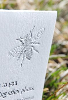 Inspiration card with quote  letterpress printed by ladybugpress