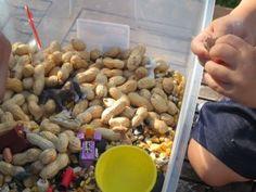 Peanut Sensory Tub - sensory fun, fine motor AND practical life!