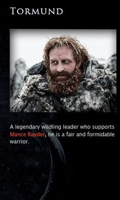 Tormund Giantsbane - game-of-thrones Photo