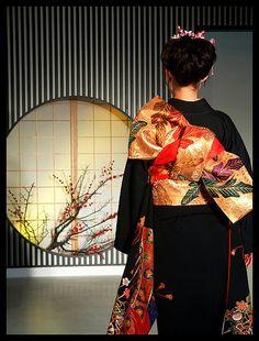 Kimono& wall