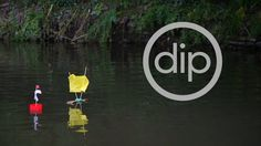 the trailer for our upcoming Dip Shropshire workshops. #wildswimming #poetry #adventure #shropshire