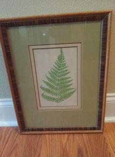 Lowe Fern Botanical Original Print Tiger Maple Framed Art
