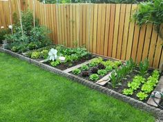 Home Vegetable Garden Design, Backyard Vegetable Gardens, Backyard Garden Design, Small Garden Design, Outdoor Gardens, Vegetables Garden, Backyard For Kids, Perennial Vegetables, Fence Garden