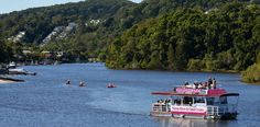 Noosa River & Canal Cruises - Daytime Cruise