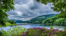 This HD wallpaper is about pink outdoor flowers beside river during daytime, ladybower reservoir, ladybower reservoir, Original wallpaper dimensions is file size is Waterton Lakes National Park, Grand Teton National Park, National Parks, Peak District, Landscape Photos, Landscape Photography, Rio, Foggy Mountains, Outdoor Flowers