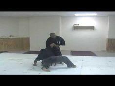 Ninjutsu :Trapping & Locking Techniques DVD