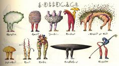 Look Inside the Extremely Rare Codex Seraphinianus, the Weirdest Encyclopedia Ever | Underwire | Wired.com