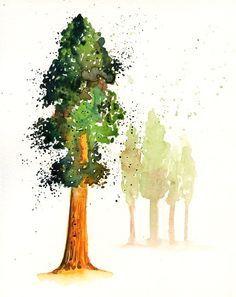 watercolor redwood tree