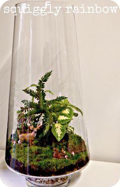 Terrarium pinspiration