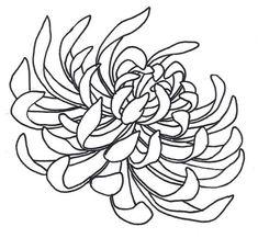 Spider_Chrysanthemum_by_sneakyguy.jpg (1031×951)