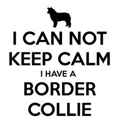 "Click visit site and Check out Cool ""Border Collie"" T-shirts. This website is top-notch. Tip: You can search ""your name"" or ""your favorite shirts"" at search bar on the top. #bordercollie"
