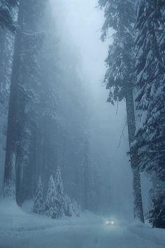...a snowy drive home...