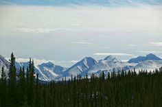 Across the Valley to the Denali Range