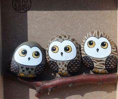 三个好朋友...来自aiai_0606的图片分享-堆糖