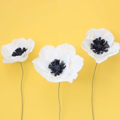 Learn how to create these fun crepe paper anemones!