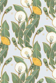 Maria Khersonets illustration with Dandelion on Behance Floral Pattern Wallpaper, Flower Background Wallpaper, Flower Backgrounds, Background Patterns, Backgrounds Free, Boho Pattern, Pattern Art, Vector Pattern, Art Et Illustration