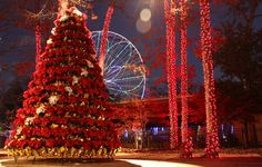 Six Flags Great Adventure's annual holiday extravaganza - Holiday in the Park - debuts in Jackson, NJ on November 21 and runs weekends and select days through January 3, 2016. More than a million g...