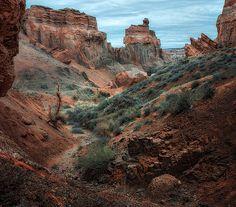 Beautiful Sharyn Canyon Kazakhstan [511x1216] by Arina Ratushnova-Osintseva