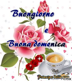 buongiorno Italian Greetings, Morning Greetings Quotes, Good Morning Images, New Years Eve Party, Science And Nature, Happy Sunday, Animals Beautiful, Rose, Facebook