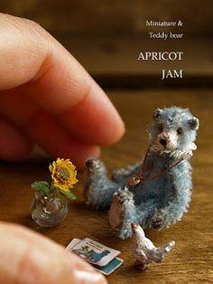 paradis express: Apricot Jam