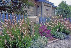 Look for hardier perennials in traditional cottage garden colors, such as pinks, purples and blues, and mass them together for a charming effect, especially against the weathered gray often found on a coastal cottage. Gravel paths work equally well with cottage and coastal styles, and the lack of a traditional lawn is completely appropriate for the setting.