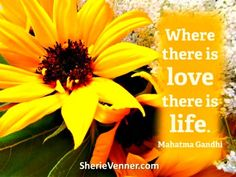 Where there is love, there is life ~ Mahatma Gandhi. An insightful post from @Sherie Venner on the #value of rekindling #love in your #relationship