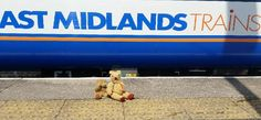 Can you help find the owner of these little guys, 2 teddy bears left on one of our trains this morning (Aug 2) #getteddyhome via East Midlands Trains @EMTrains