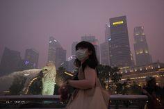 Singapore Haze - In Focus - The Atlantic