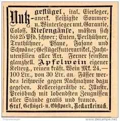 Original-Werbung/Inserat/ Anzeige 1892: GRAF GEFLÜGEL-UND OBSTPARK NECKARSTEINACH  ca. 45 x 50 mm