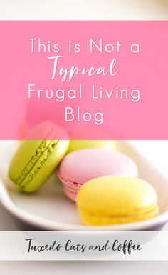 This is not a typical frugal living blog. First off, I've been in love with frugal mom blogs since a few years ago when I started using Pinterest. Which is weird, because I'm not a mom, and I don't want to be frugal forever. I want to be very successful and wealthy. So this is definitely not one of those stay-at-home mom frugal blogs (and I won't be dispensing any parenting advice!).