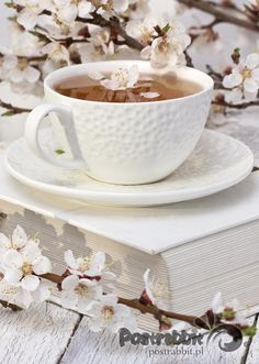 Herbata z kwiatem wiśni