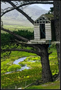 Treehouse of Dreams by scarsick, via Flickr