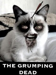 The grumping dead- hahahahahaha, I was drinking something when I first saw this. Not good!!!