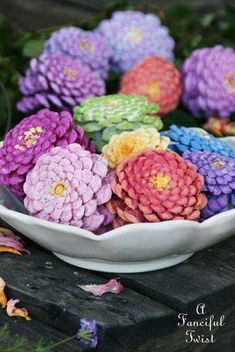 These are pinecones painted like Zinnia to create a centerpiece that requires no water.