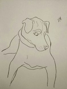 Dog, minimal line-drawing by Sarah Myers.  Charcoal.