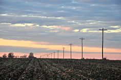 Backroads and Telephone Poles - Noxubee County Mississippi