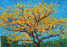 El Árbol Corteza Amarilla (Tabebuia ochracea) De Costa Rica #costarica #mansua…