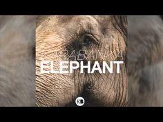 Karabanka - Elephant  Listen to my EDM track  Enjoy.