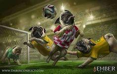 Sport pugs
