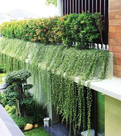 Roof Design, Exterior Design, House Design, Landscape Design, Garden Design, Green Architecture, Sustainable Architecture, Pavilion Architecture, Residential Architecture