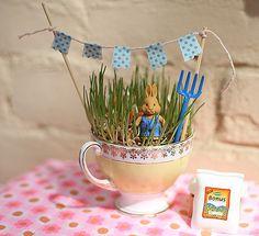 tea cup wheat grass mini gardens