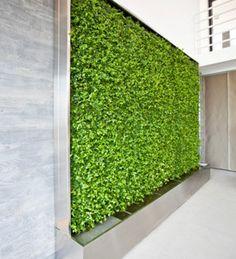 pflanzenwand als raumteiler ideen f r den messestand pinterest pflanzenwand raumteiler. Black Bedroom Furniture Sets. Home Design Ideas