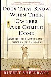 Dogs That Know When Their Owners Are Coming Home: And Other Unexplained Powers of Animals, Rupert Sheldrake, 9780609805336, #books, #btripp, #reviews