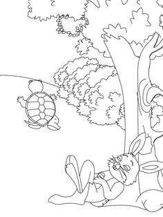 Tortoise Coloring Sheet!